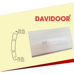 davidoor1